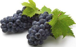 Бесплатные фото виноград,гроздь,ягоды