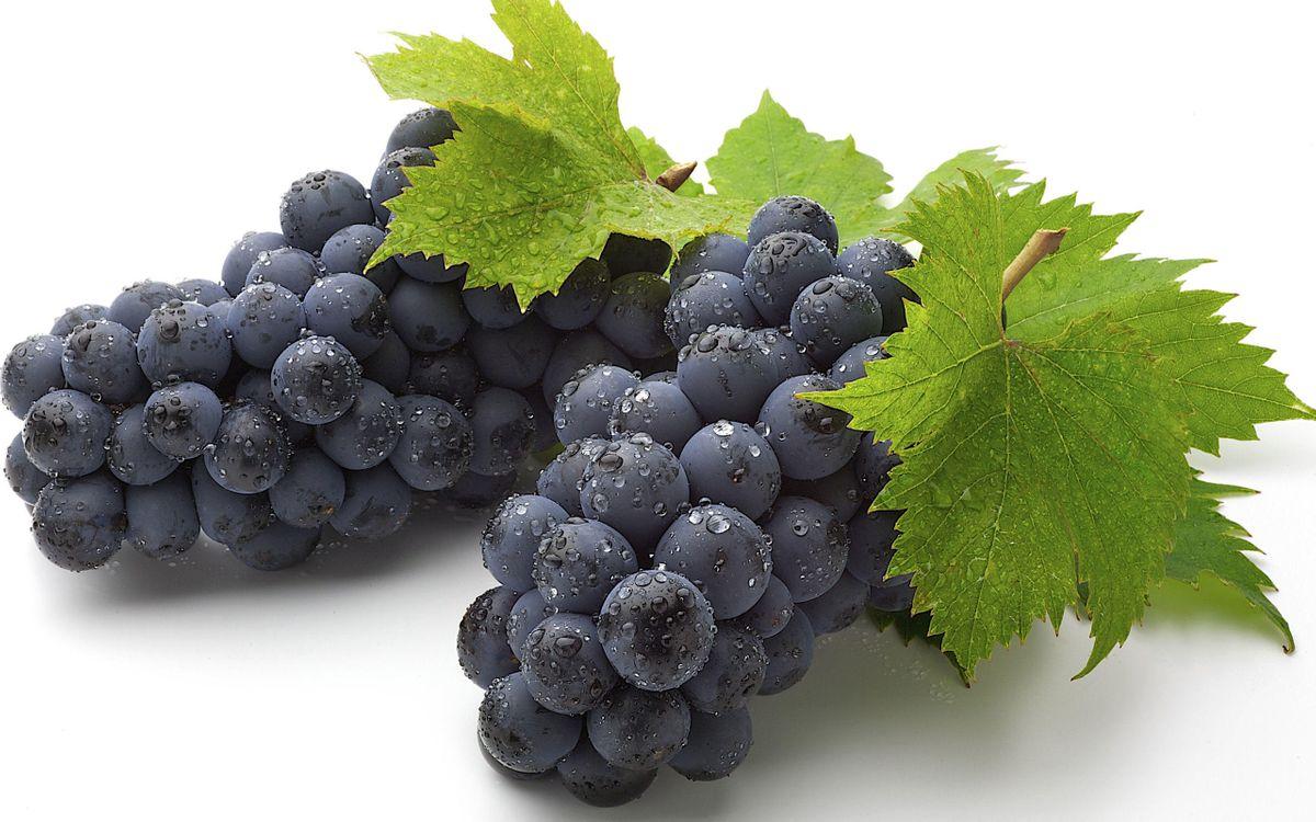 Картинка виноград, ягоды на телефон