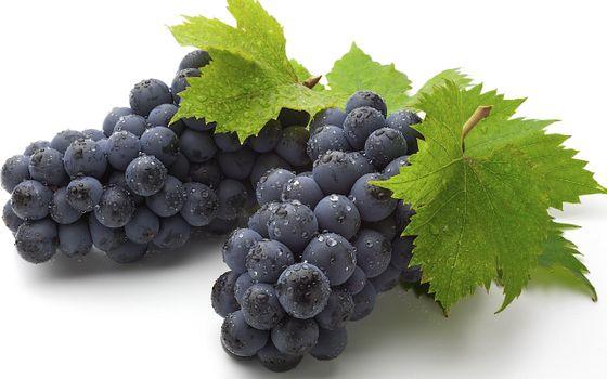 Фото бесплатно виноград, гроздь, ягоды