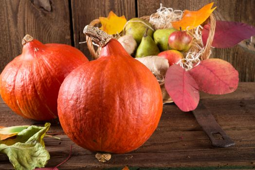 Photos for your basket, autumn composition of vegetables and fruits