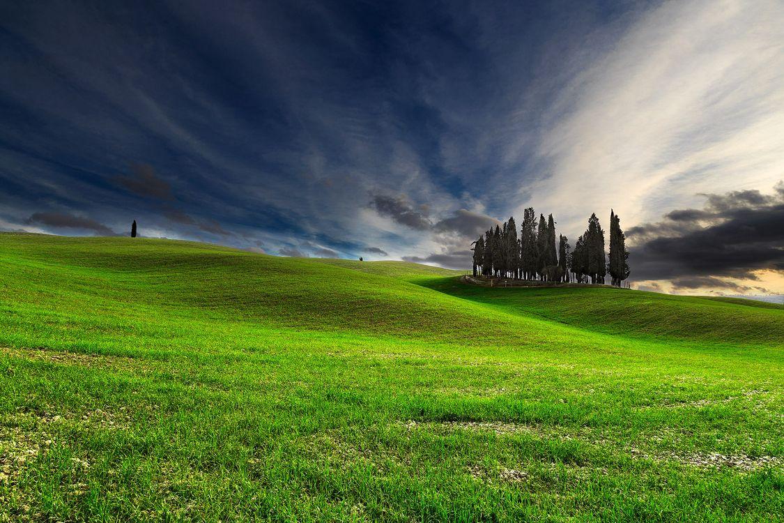 Фото самые красивые поле, холмы