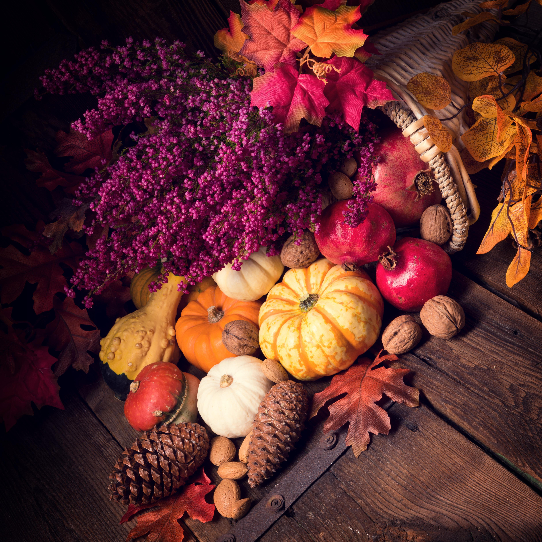 обои осенняя композиция из овощей и фруктов, осенние листья, корзина, шишки картинки фото