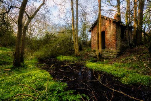 Фото бесплатно пейзаж, заброшенный дом, деревья