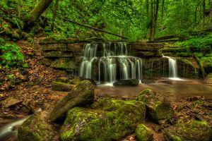 Бесплатные фото Big Branch Falls,New River Gorge,West Virginia,лес,деревья,водопад,скалы