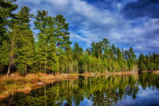 Фото бесплатно озеро, лес, деревья