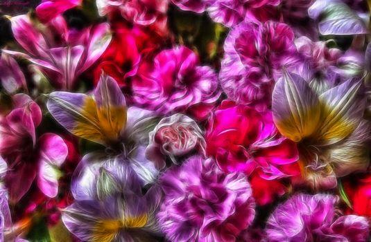 Фото бесплатно цветочная абстракция, 3d, флора