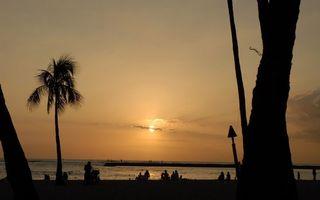 Бесплатные фото вечер,побережье,пальмы,люди,море,горизонт,небо