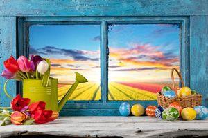 Фото бесплатно пасхальные яйца, пасха, окно