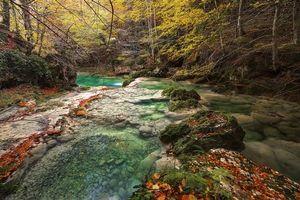 Бесплатные фото Rio Urederra,Sierra de Urbasa,Наварра,Испания,лес,река,деревья