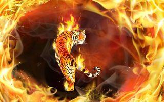 Бесплатные фото тигр,огонь,3d,art