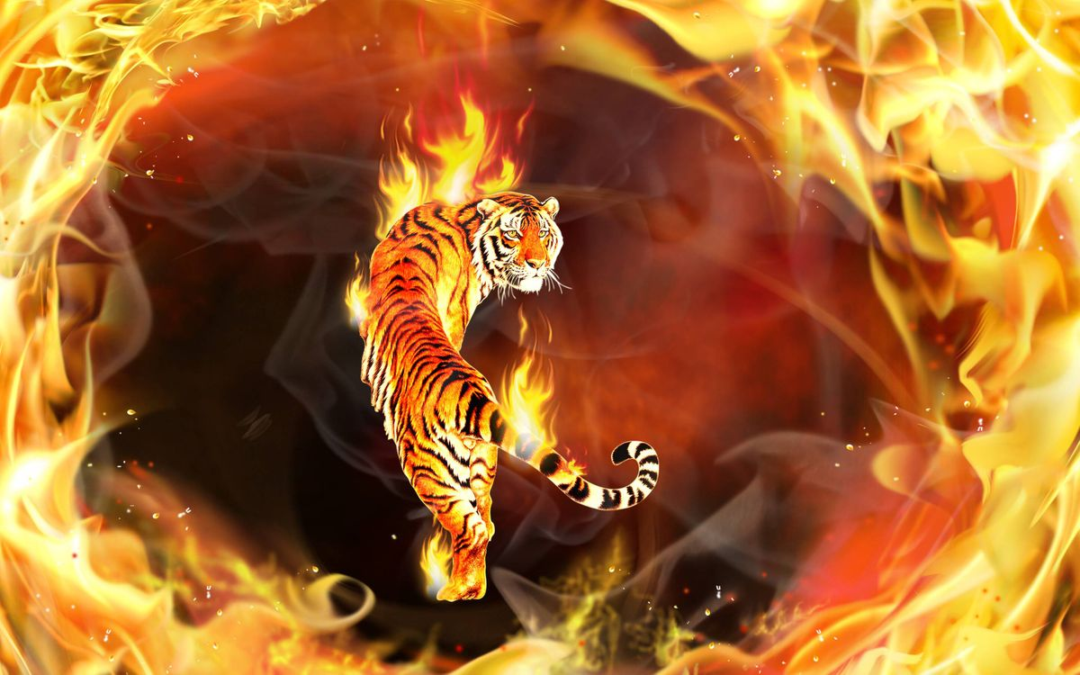 Обои тигр, огонь, 3d картинки на телефон