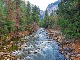 Бесплатные фото Merced River,yosemite national park,река,камни,горы,лес,деревья