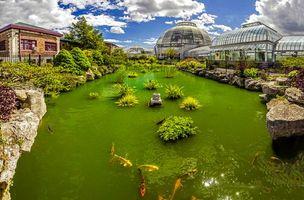 Бесплатные фото пруд и оранжерея,Belle Isle,Мичиган