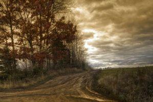Фото бесплатно закат, поле, дорога, деревья, пейзаж