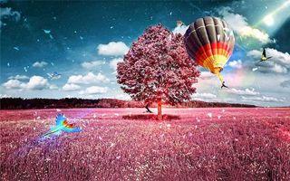 Бесплатные фото поле,дерево,воздушный шар,попугай,art