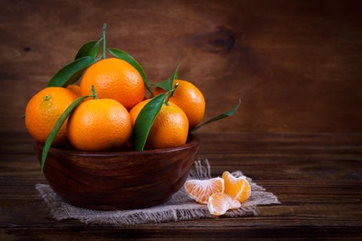 Splash of citrus, fruit free download