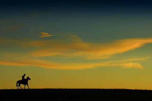 Фото бесплатно всадник, лошадь, поздний вечер