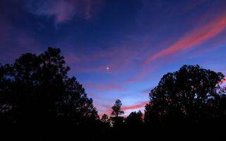Бесплатные фото вечер,деревья,небо,звезда,облака