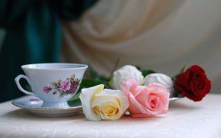 Фото бесплатно чашка, блюдце, чай, розы, стол, еда, цветы