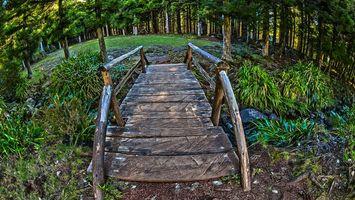 Фото бесплатно мостик, доски, ручей, камни, трава, деревья