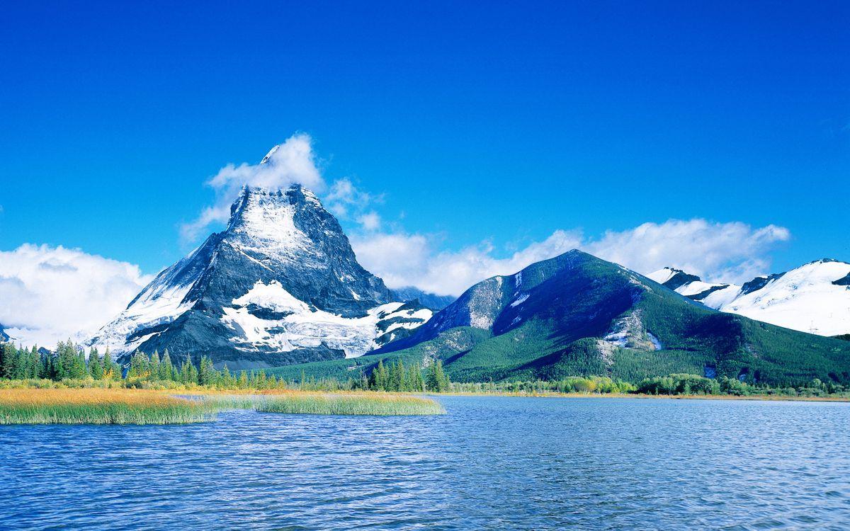 Обои озеро, растительность, горы картинки на телефон