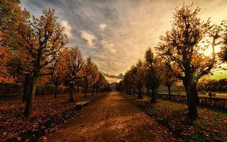 Бесплатные фото осень, дорожка, лавочка, скамейка, аллея, деревья, трава