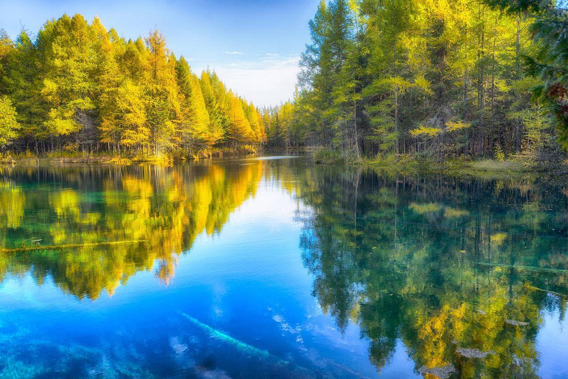 Фото бесплатно озеро, осень, деревья, пейзаж, пейзажи - скачать