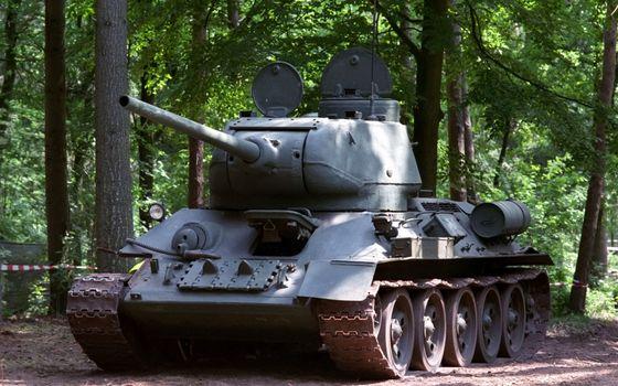 Бесплатные фото танк,т-34,башня,люки,дуло,пушка,броня,гусеницы,лес