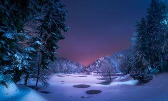 Бесплатные фото ночь,озеро,зима,снег,деревья,лес,тропинка