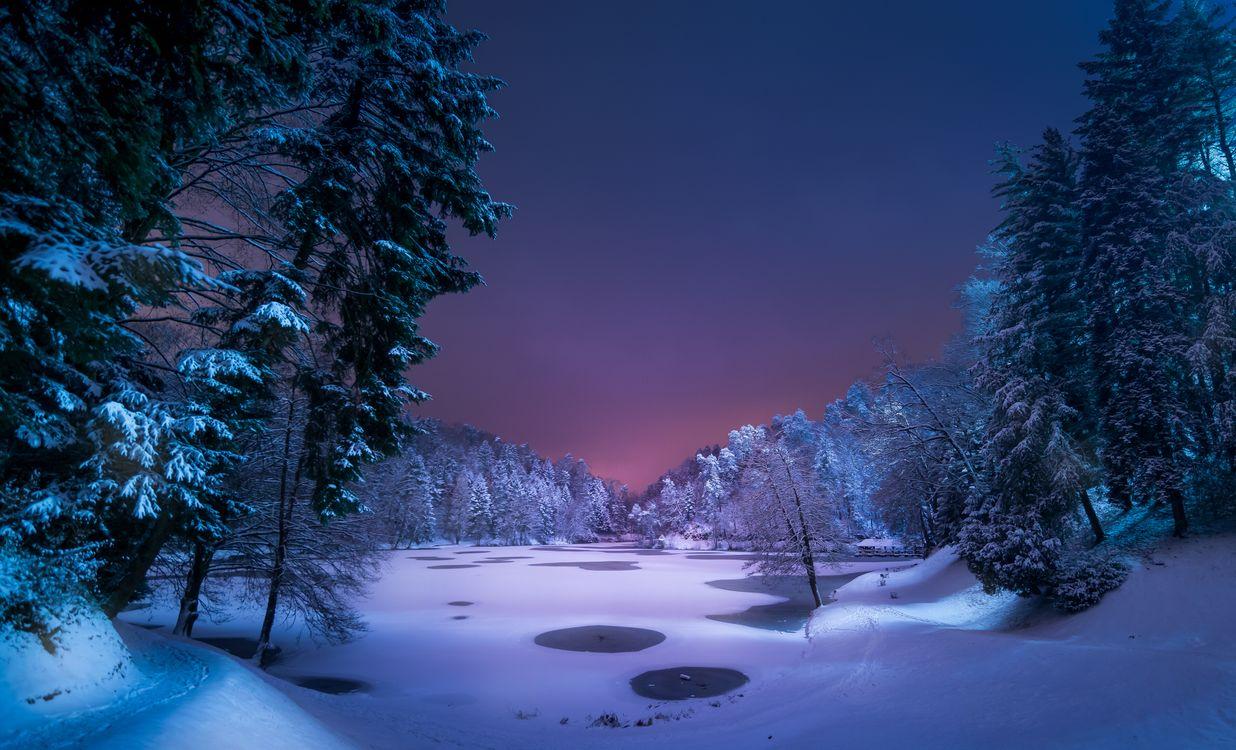 Фото бесплатно ночь, озеро, зима, снег, деревья, лес, тропинка, пейзаж, пейзажи