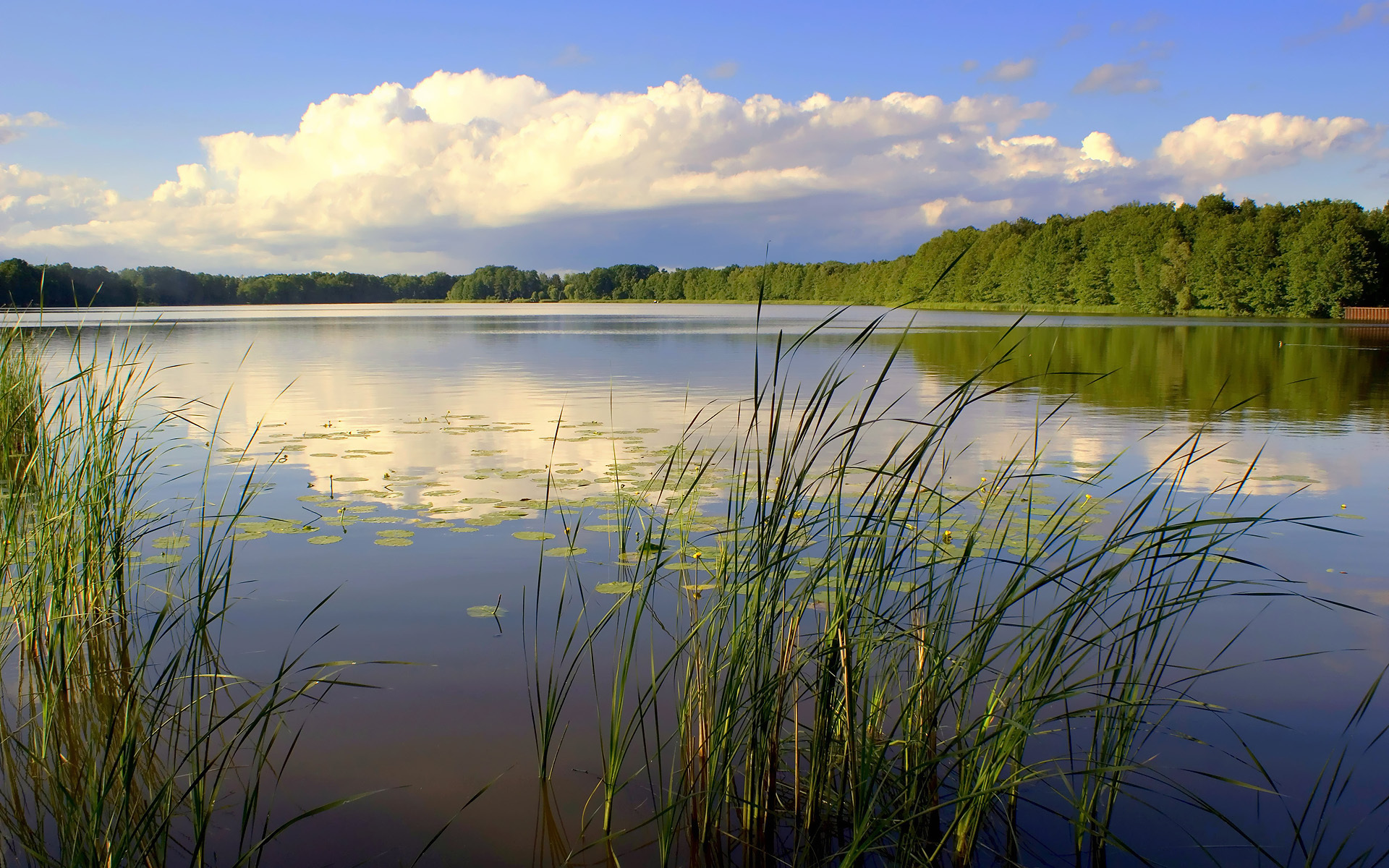 Озерцо  № 3195316 загрузить