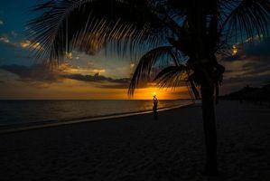 Заставки пальма, закат, девушка