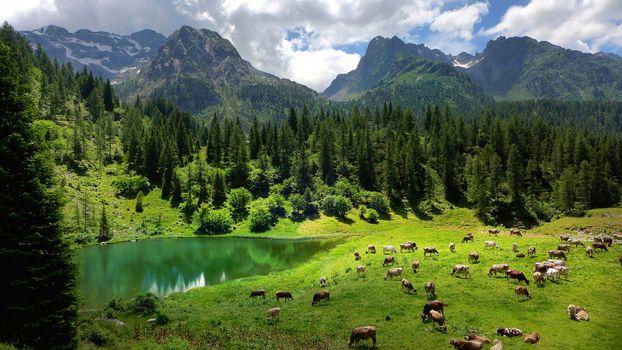Фото бесплатно Альпы, Val Brembana, North Italy