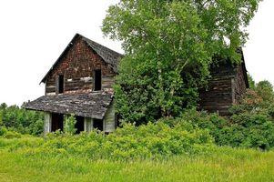 Бесплатные фото лето,поле,дом,руины,деревья,пейзаж