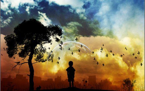 Заставки ребенок, мальчик, дерево