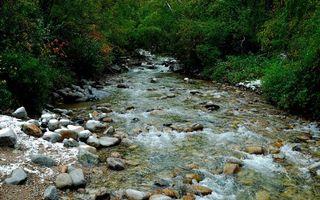 Фото бесплатно ручей, горный, течение