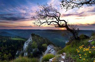 Заставки Швейцария, закат, горы, скалы, деревья, пейзаж