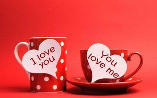 Бесплатные фото посуда,блюдце,чашка,кружка,сердечки,надписи,фон красный