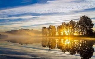 Бесплатные фото берег реки,деревья,восход,лучи солнца,туман