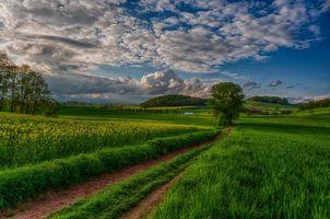 Бесплатные фото nature, landscape, scenery, view, sky, sunset, field