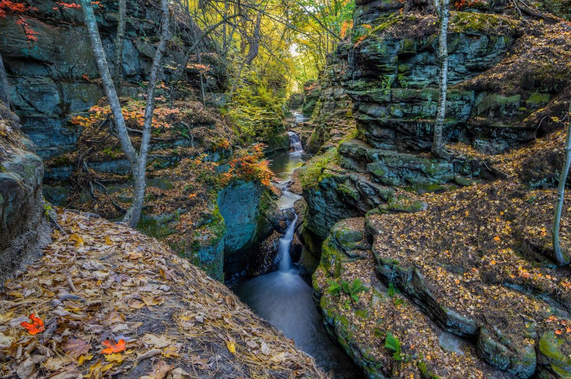 Фото бесплатно осень, лес, днревья, скалы, речка, ручей, водопад, природа, пейзажи