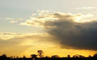 Бесплатные фото вечер,деревья,макушки,небо,облака,закат