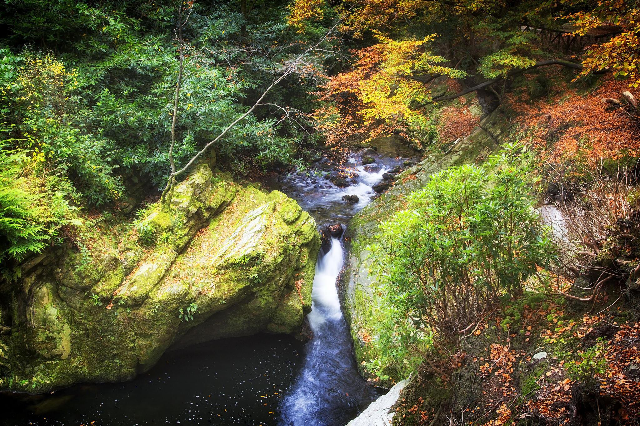 обои осень, речка, ручей, водопад картинки фото