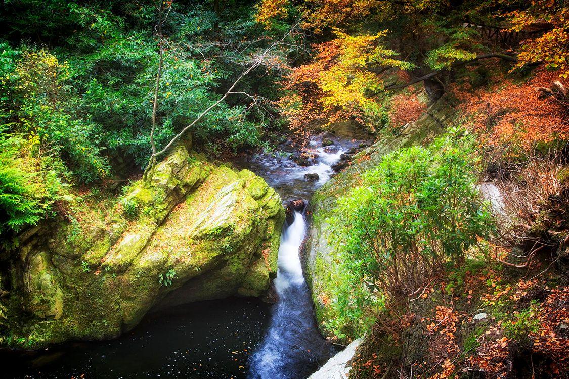 Фото бесплатно осень, речка, ручей, водопад, скалы, деревья, пейзаж, пейзажи