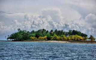 Фото бесплатно тропики, море, остров, пальмы, деревья, кустарник, небо, облака