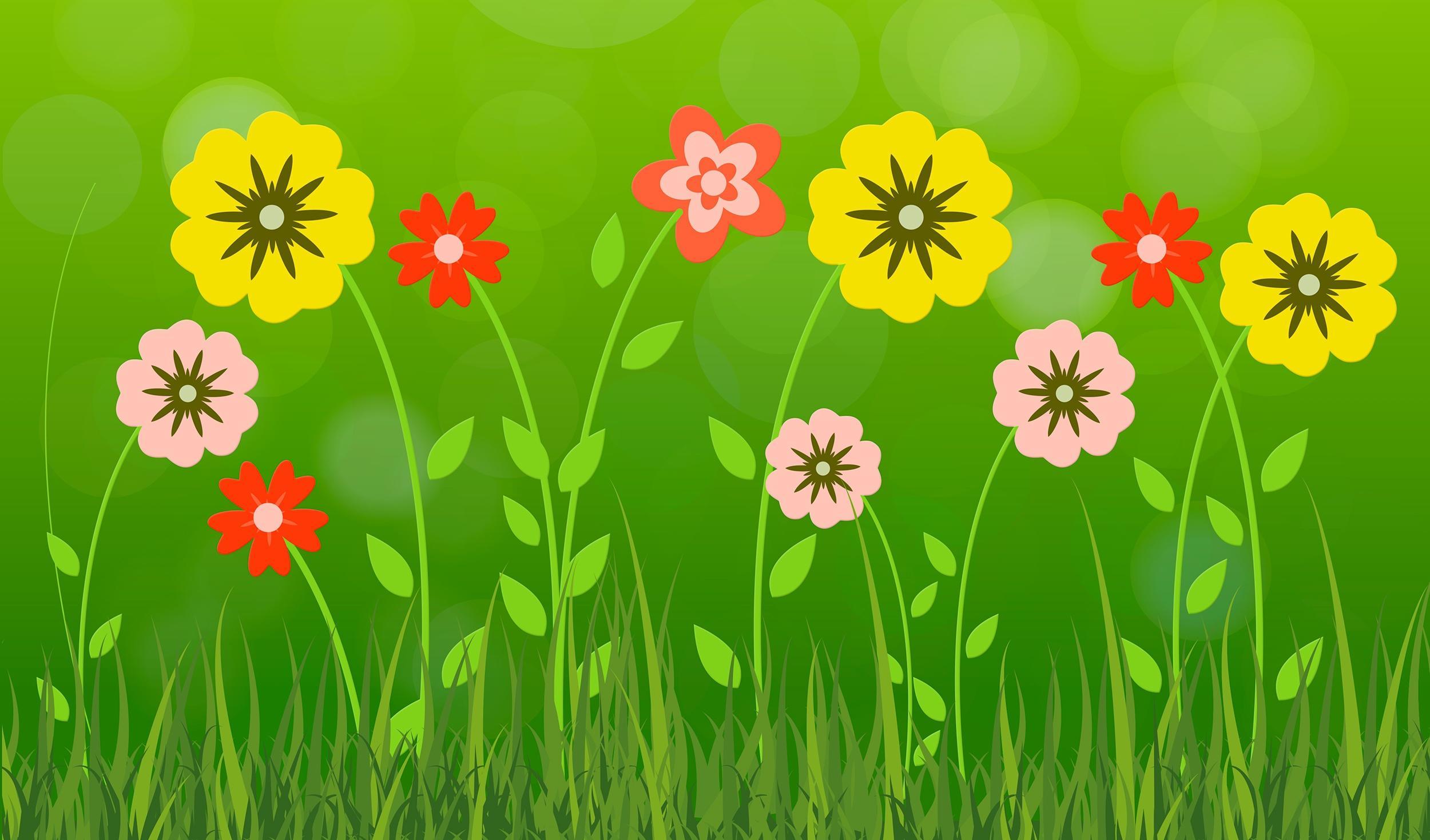 Обои цветы, лепестки, лето