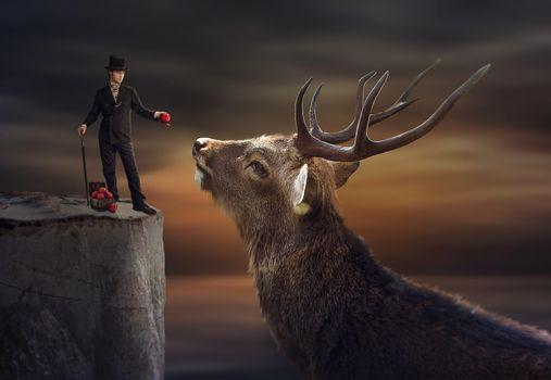 Фото бесплатно олень, парень, яблоки