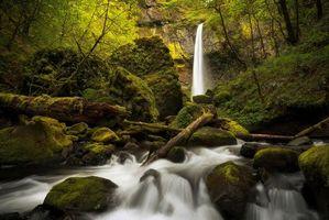 Бесплатные фото лес,деревья,скалы,камни,водопад,природа