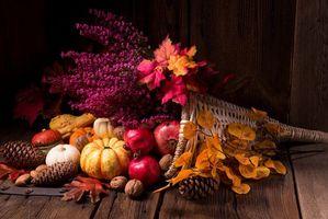 Бесплатные фото осенняя композиция из овощей и фруктов,осенние листья,корзина,шишки,орехи