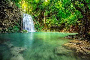 Бесплатные фото Канчанабури,Азия,Юго-Восточная Азия,Таиланд,лес,деревья,природа
